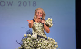 SDCC 2018: Photographic Highlights from the Her Universe Fashion Show