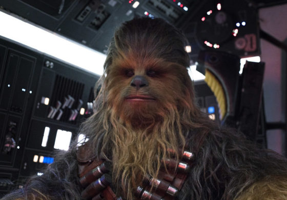Chewbacca: The Ultimate Warrior