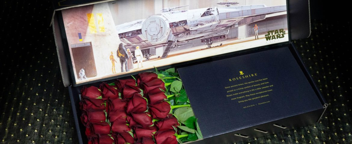 Mother's Day: The Best 'Star Wars' Gifts for Her